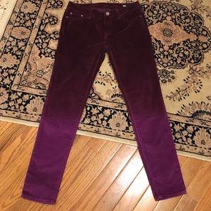 NWOT Buffalo suede pants - deep wine color